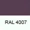 RAL4007